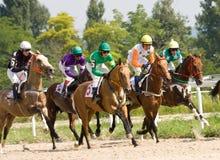 Carrera de caballos. Imagen de archivo libre de regalías