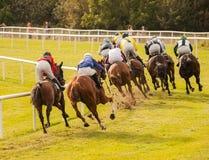 Carrera de caballos abajo de la pista Imagenes de archivo