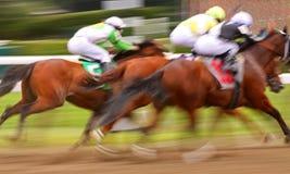 Carrera de caballos abstracta de falta de definición de movimiento Foto de archivo libre de regalías