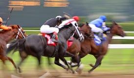 Carrera de caballos abstracta de falta de definición de movimiento Imágenes de archivo libres de regalías