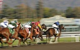 Carrera de caballos abstracta de falta de definición de movimiento Imagen de archivo libre de regalías