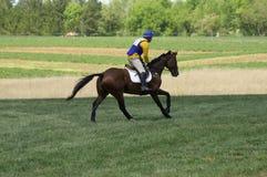 Carrera de caballos de país cruzado Imagenes de archivo
