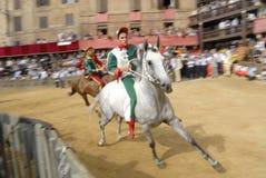 Carrera de caballos del palio de Siena Fotos de archivo