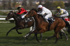 Carrera de caballos dinámica en el prix magnífico FRBC Fotos de archivo libres de regalías