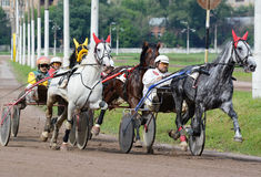 Carrera de caballos el trotar en pista Foto de archivo
