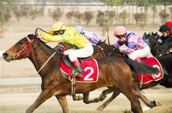 Carrera de caballos en China Imagen de archivo libre de regalías