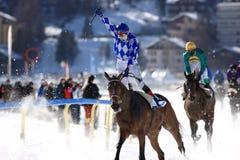 Carrera de caballos en la nieve Foto de archivo libre de regalías