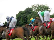 Carrera de caballos en York Fotos de archivo libres de regalías