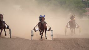 Carrera de caballos de los carros