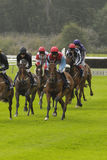 Carrera de caballos nacional Perth Escocia Reino Unido de la caza Imagenes de archivo