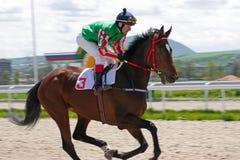 Carrera de caballos para el premio del Otkritia Fotografía de archivo