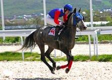 Carrera de caballos para el premio del Otkritia Imagenes de archivo