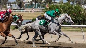 Carrera de caballos tres Fotografía de archivo