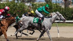 Carrera de caballos tres Fotos de archivo libres de regalías