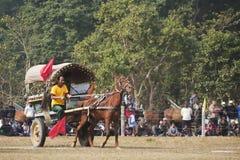 Carrera de coches de caballos - festival del elefante, Chitwan 2013, Nepal Foto de archivo libre de regalías