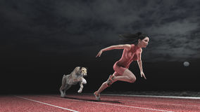 Carrera entre la mujer y el guepardo Fotos de archivo libres de regalías