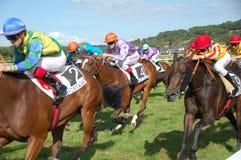 Carreras de caballos Fotografía de archivo libre de regalías