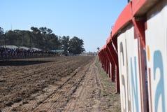 Carreras DE caballos stock afbeelding