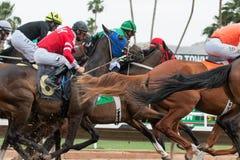 Carreras de caballos pasadas en Arizona hasta caída imágenes de archivo libres de regalías