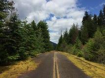 Carretera abandonada Fotografía de archivo