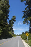 Carretera austral in chile. Detail of the carretera austral in chile Royalty Free Stock Images