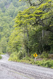 Carretera austral in chile. Part of the carretera austral in chile Stock Image