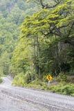 Carretera austral in chile Stock Image