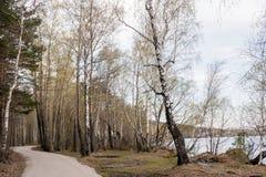 Carretera con curvas en bosque a lo largo del lago en primavera temprana Imagen de archivo