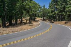 Carretera con curvas en el bosque denso de California imágenes de archivo libres de regalías