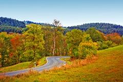 Carretera con curvas en el bosque otoñal Fondo de la naturaleza fotografía de archivo libre de regalías