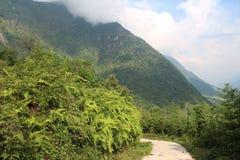 Carretera con curvas en la montaña en el PA del Sa, Vietnam fotos de archivo
