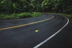 Carretera con curvas mojada Fotografía de archivo