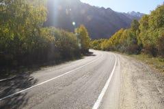 Carretera de asfalto curvada vacía, árboles con el cielo azul amarilleado de las hojas Fotos de archivo libres de regalías