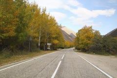 Carretera de asfalto curvada vacía, árboles con el cielo azul amarilleado de las hojas Foto de archivo libre de regalías