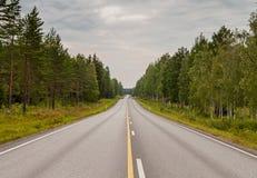 Carretera de asfalto en el bosque en día nublado Fotos de archivo libres de regalías