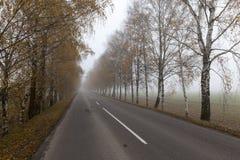 Carretera de asfalto en la niebla Foto de archivo libre de regalías