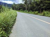 Carretera de asfalto por naturaleza Fotos de archivo libres de regalías