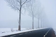 Carretera de asfalto que desaparece en calina del invierno Fotografía de archivo