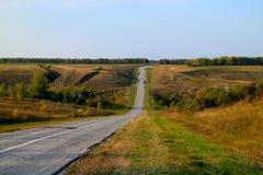 Carretera de asfalto que desaparece en horizonte en el fondo de los bosques de los prados y del cielo azul Foto de archivo