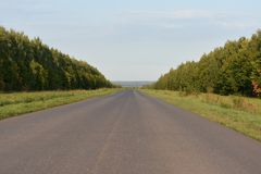Carretera de asfalto de tierra del camino Fotografía de archivo
