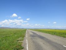 Carretera de asfalto a través de los prados Foto de archivo libre de regalías