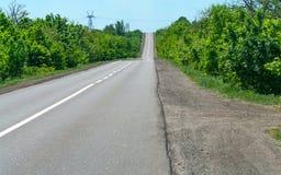 Carretera de asfalto vacía en el bosque Fotografía de archivo