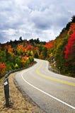 Carretera de la caída Foto de archivo libre de regalías