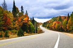 Carretera de la caída Foto de archivo
