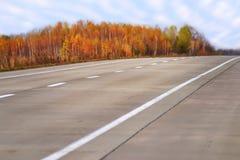 Carretera del camino del otoño con los abedules blancos Imágenes de archivo libres de regalías