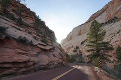 Carretera 9 del camino en Zion Imagen de archivo libre de regalías