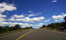 Carretera del desierto con horizonte Foto de archivo libre de regalías