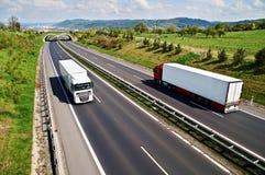 Carretera del pasillo con la transición para los animales, yendo abajo de los camiones de la carretera dos Imagen de archivo
