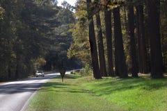 Carretera del rastro de Natchez Fotos de archivo libres de regalías