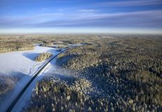 Carretera en el bosque del invierno Imagen de archivo